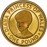 2007 Jersey Gold Proof £1 Princess Diana Coin Reverse