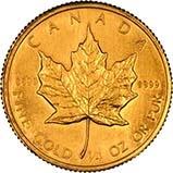 1982 0.25 oz Gold Coin Maple Bullion 24021