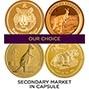1 oz Gold Coin Bullion Best Value Secondary Market In Capsule 20686
