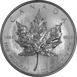 1 oz Palladium Maple Coin Our Choice